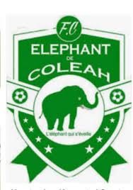 Eléphants Coleyah